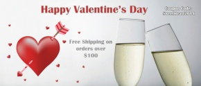 Free Shipping On Valentine's Day